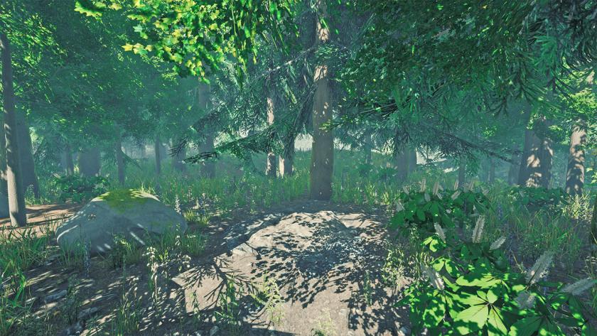 Расположение предметов в The Forest