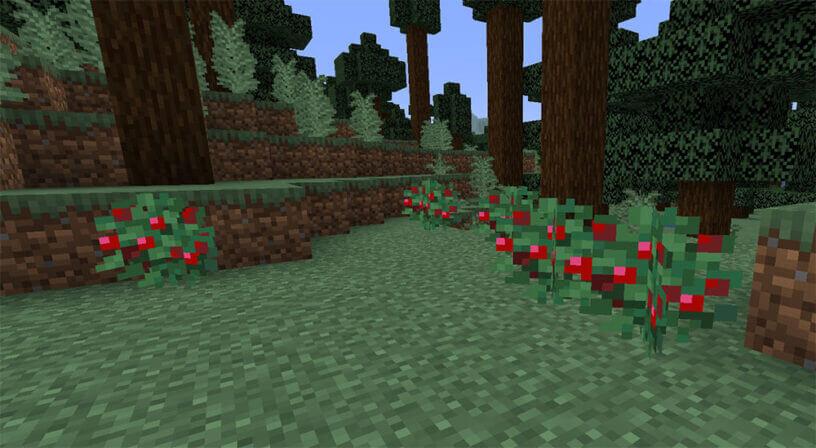Как приручить лису в Minecraft 1.14?